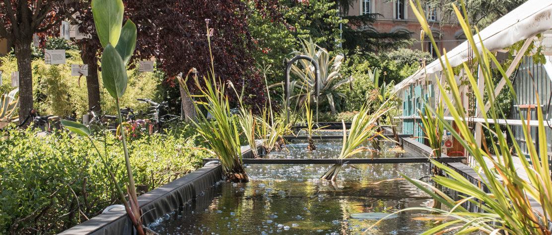 impianto acquaponico alle serre ai giardini
