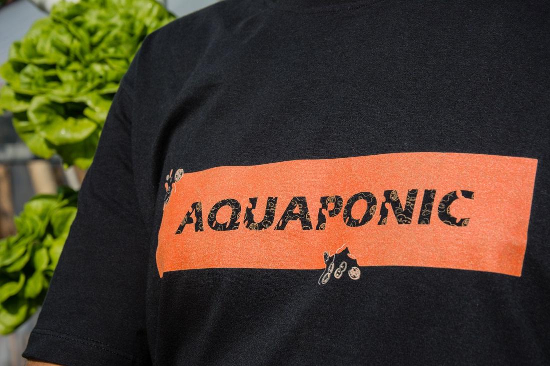 Vesti Aquaponic